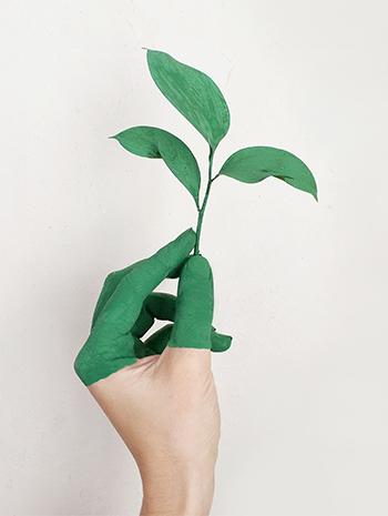 Respeto por el medio ambiente